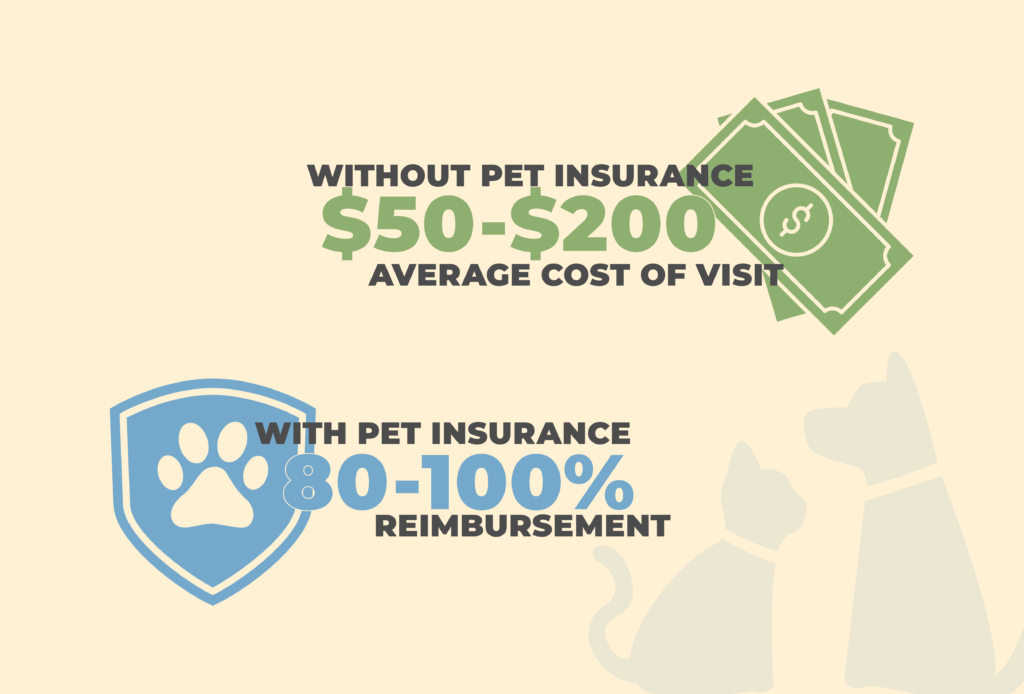 Emergency Savings or Pet Insurance: The Choice is Yours