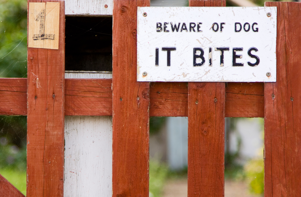 Pet insurance For Third-Party Liability Coverage such as bit by a dog